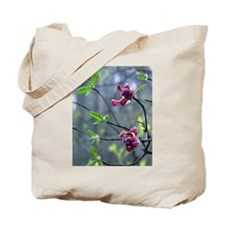 Framed Prints Tote Bag