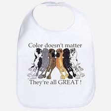 N6 Color Doesn't Matter Bib