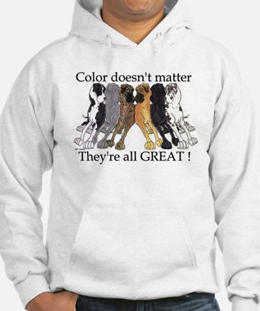 N6 Color Doesn't Matter Hoodie