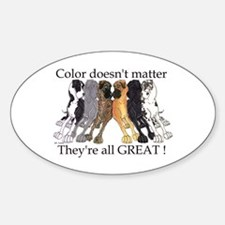 N6 Color Doesn't Matter Oval Sticker (10 pk)