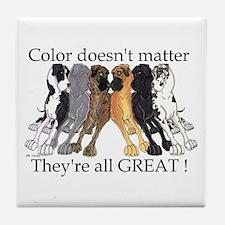 N6 Color Doesn't Matter Tile Coaster