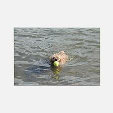 Cairn Terrier Aquatics Rectangle Magnet
