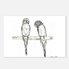 Funny Budgerigars Postcards (Package of 8)