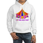 Patchwork Big Top Hooded Sweatshirt