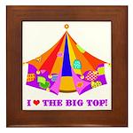 Patchwork Big Top Framed Tile