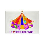 Patchwork Big Top Rectangle Magnet (10 pack)