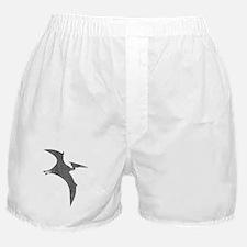 Vintage Pterodactyl Boxer Shorts