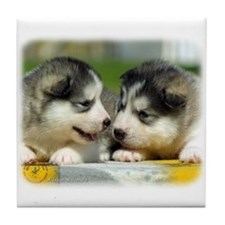 Alaskan Malamute puppies 9R034D-348 Tile Coaster