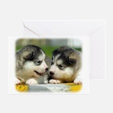 Alaskan Malamute puppies 9R034D-348 Greeting Card
