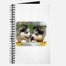 Alaskan Malamute puppies 9R034D-348 Journal