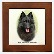 Belgian Shepherd (Groenendael) Framed Tile