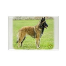 Belgian Shepherd (Terveuren) Rectangle Magnet