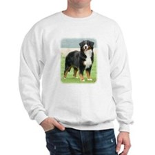 Bernese Mountain Dog 9Y066D-133 Sweatshirt