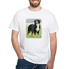 Bernese Mountain Dog 9Y066D-133 Shirt