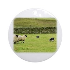 Border Collie 8M051D-10 Ornament (Round)