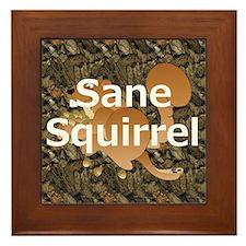 Sane Squirrel Framed Tile
