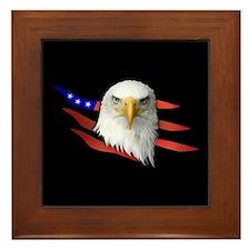 Anerican Eagle Framed Tile