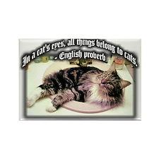 Cat's Eyes Rectangle Magnet