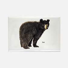 Black Bear Rectangle Magnet
