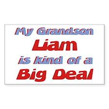 Grandson Liam - Big Deal Rectangle Decal