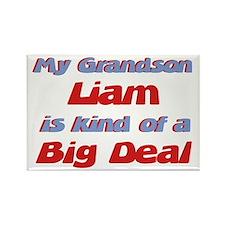 Grandson Liam - Big Deal Rectangle Magnet