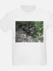 Unique Golan heights T-Shirt