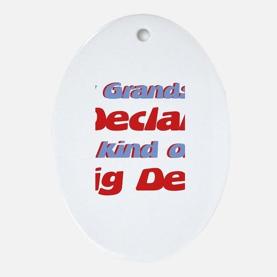 Grandson Declan - Big Deal Oval Ornament