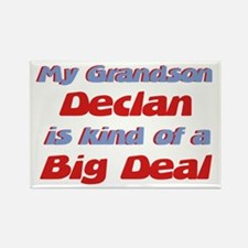 Grandson Declan - Big Deal Rectangle Magnet