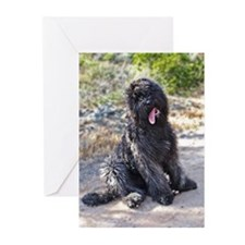 Bouvier0423080037 Greeting Cards