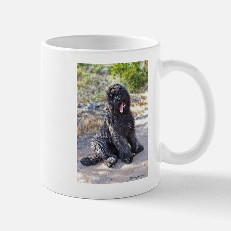 Bouvier0423080037 Mugs