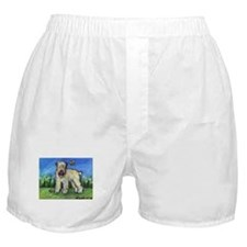 Wheatie eyes butterfly Boxer Shorts