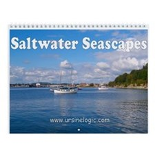 Saltwater Seascapes Wall Calendar