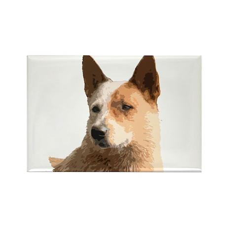 Cattle Dog Rectangle Magnet (10 pack)