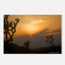 Sunset over Joshua Tree Natio Postcards (Package o