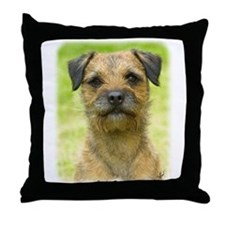 Border Terrier 8W44D-23 Throw Pillow