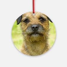 Border Terrier 8W44D-23 Ornament (Round)