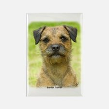 Border Terrier 8W44D-23 Rectangle Magnet