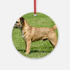 Border Terrier 9Y046D-035 Ornament (Round)