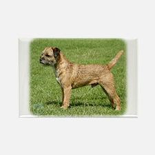 Border Terrier 9Y046D-035 Rectangle Magnet