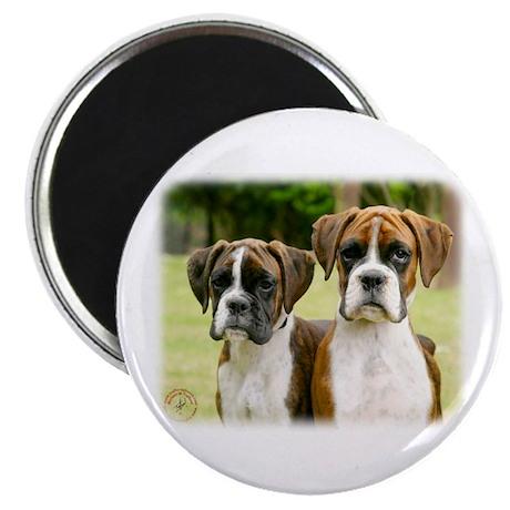 "Boxer puppies 9Y049D-064 2.25"" Magnet (100 pack)"