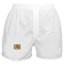 Unique Corkscrews Boxer Shorts