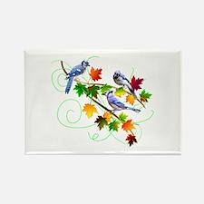 Blue Jays Rectangle Magnet (10 pack)