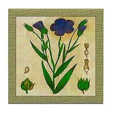 Common Flax Tile Coaster