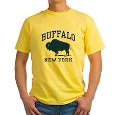 Buffalo New York T