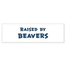 Raised by Beavers Bumper Car Sticker