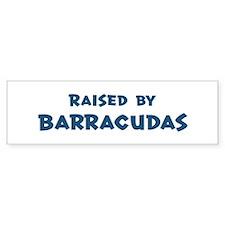 Raised by Barracudas Bumper Bumper Sticker