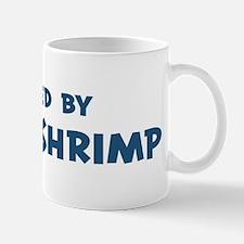 Raised by Brine Shrimp Mug