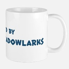 Raised by Eastern Meadowlarks Mug