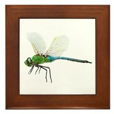 Dragonfly 3 Framed Tile