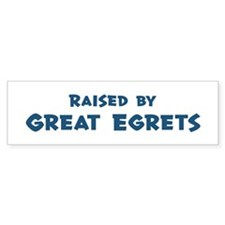 Raised by Great Egrets Bumper Sticker (10 pk)
